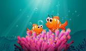 Fotografie Fische im Wasser