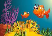 Fotografie Fisch in ein tiefes Wasser