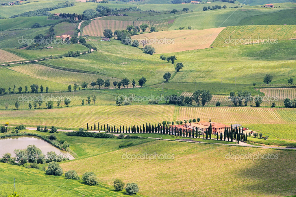 Tuscany green hills in italy stok editoryel foto raf for Green italy