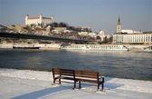 Fotografie Bratislava - hrad a katedrála z řeky v zimě