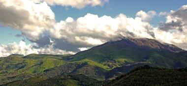 Nature panorama