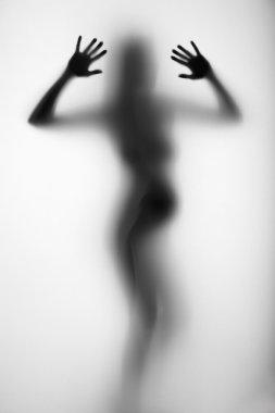 Pregnant woman silhouette behind a curtain