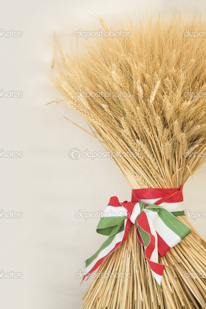 Grain, bandaged with tricolor banner as symbol of harvest