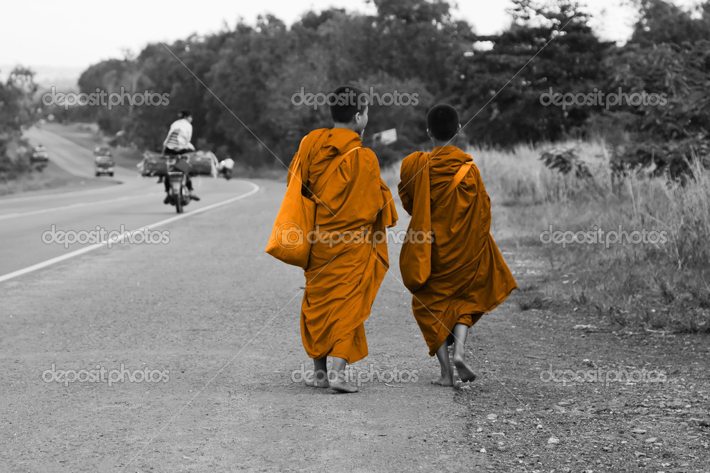 Cambodian monks walking on the road
