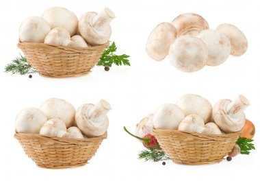 Mushrooms in wicker basket isolated on white