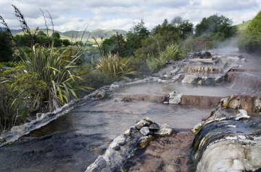New Zealand Hot Spring and Spa Pool in Rotorua