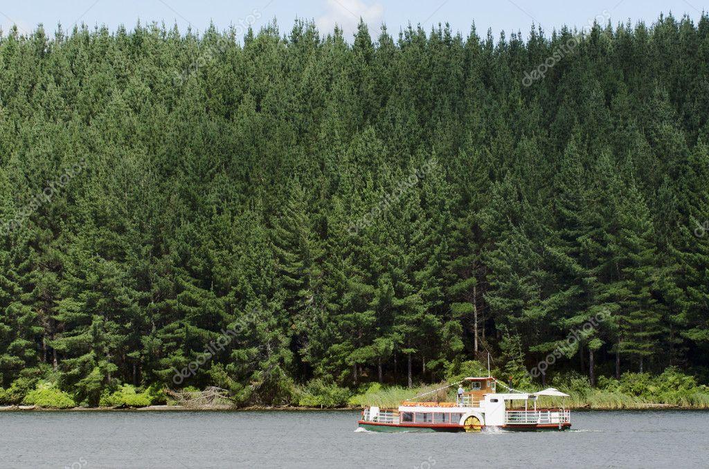 Boating - Paddle Boat