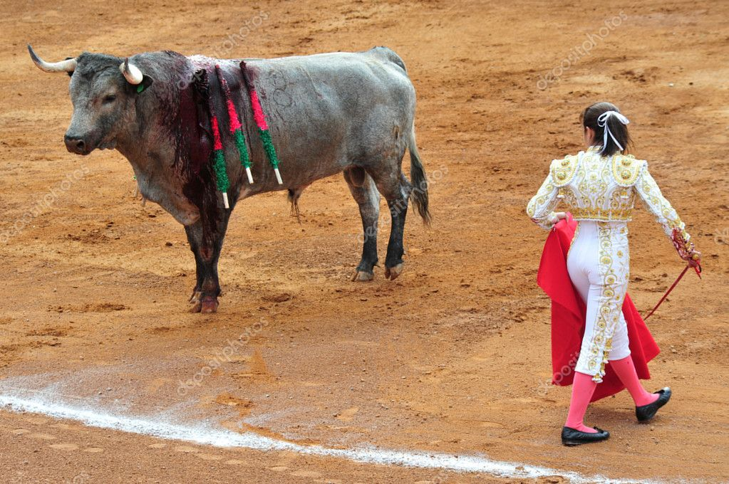 the impact of bullfighting in mexico Mexico: sonora bans bullfighting under new animal protection law in may 2013, sonora has become the first mexican state to ban bullfighting, recently passing the long-awaited animal protection law addressing cruelty to animals.