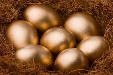 Egg series : Seven golden egg - zoom