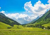 Panorama bellissima natura delle Alpi in austria