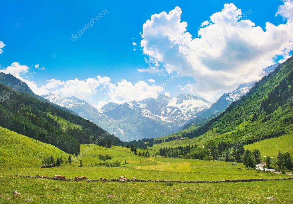 Beautiful nature landscape in the Alps in Austria.