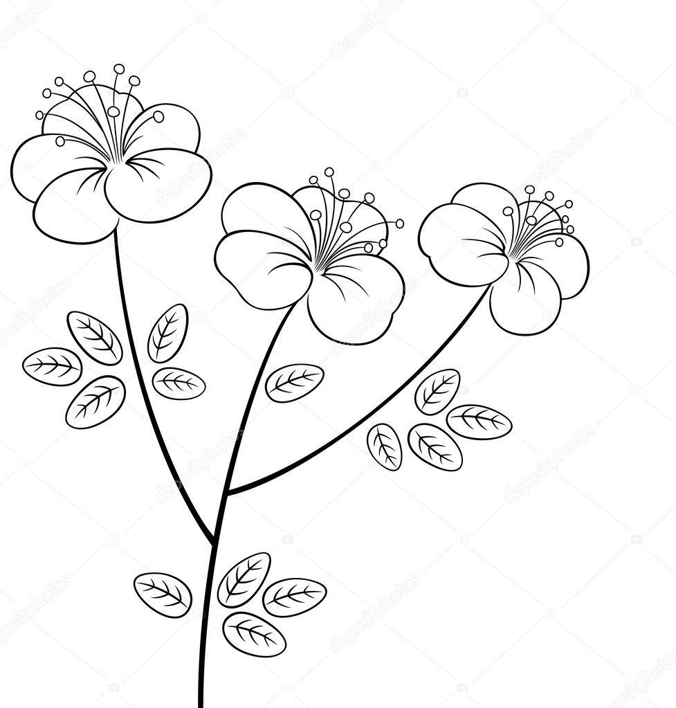 Line Art Flowers Husqvarna : 예쁜 꽃 라인 아트 — 스톡 벡터 brahmapootra
