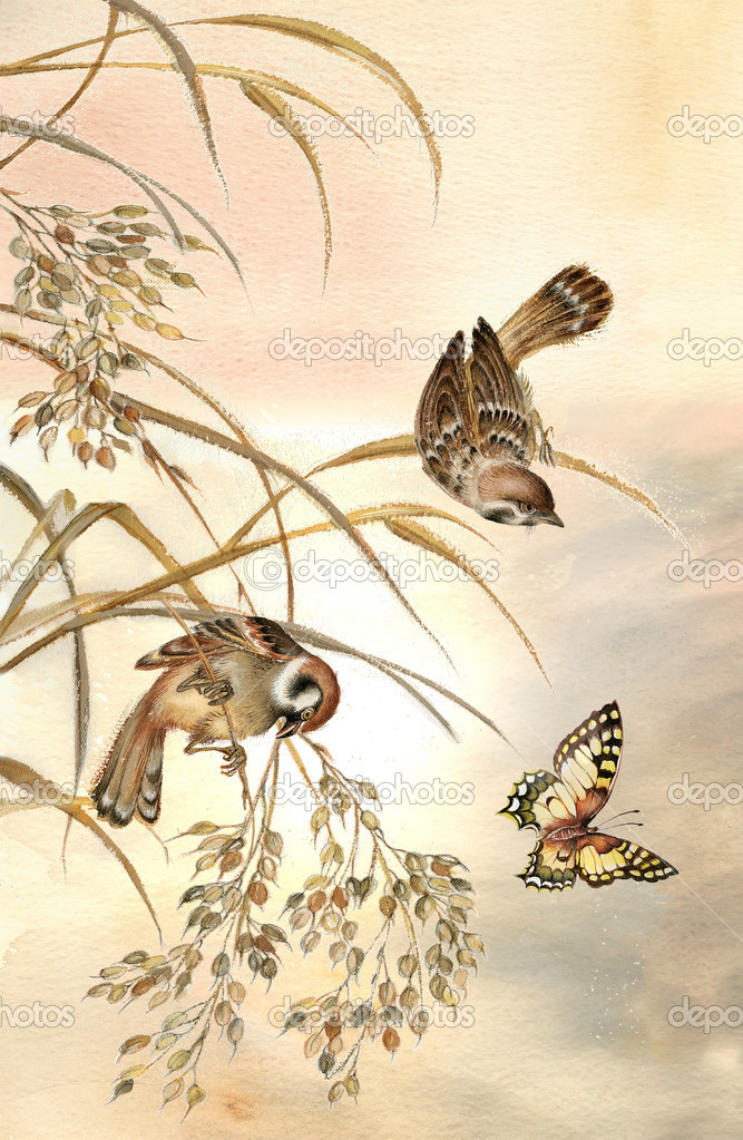 Painting of two sparrows sitting on stems and watching beautiful butterfly at sunrise