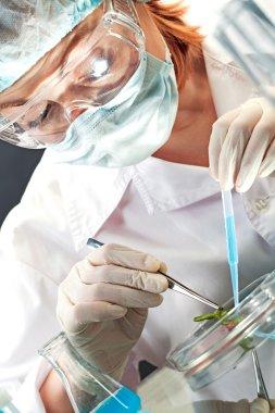 Biological experiment