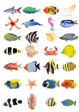 Collection of marine animals
