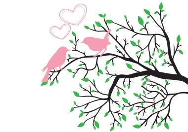 Spring love of birds