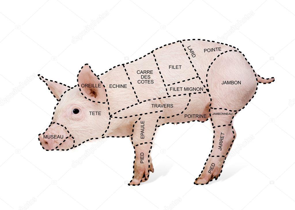 Schweinefleisch Schnitt Diagramm Poster in Französisch — Stockfoto ...