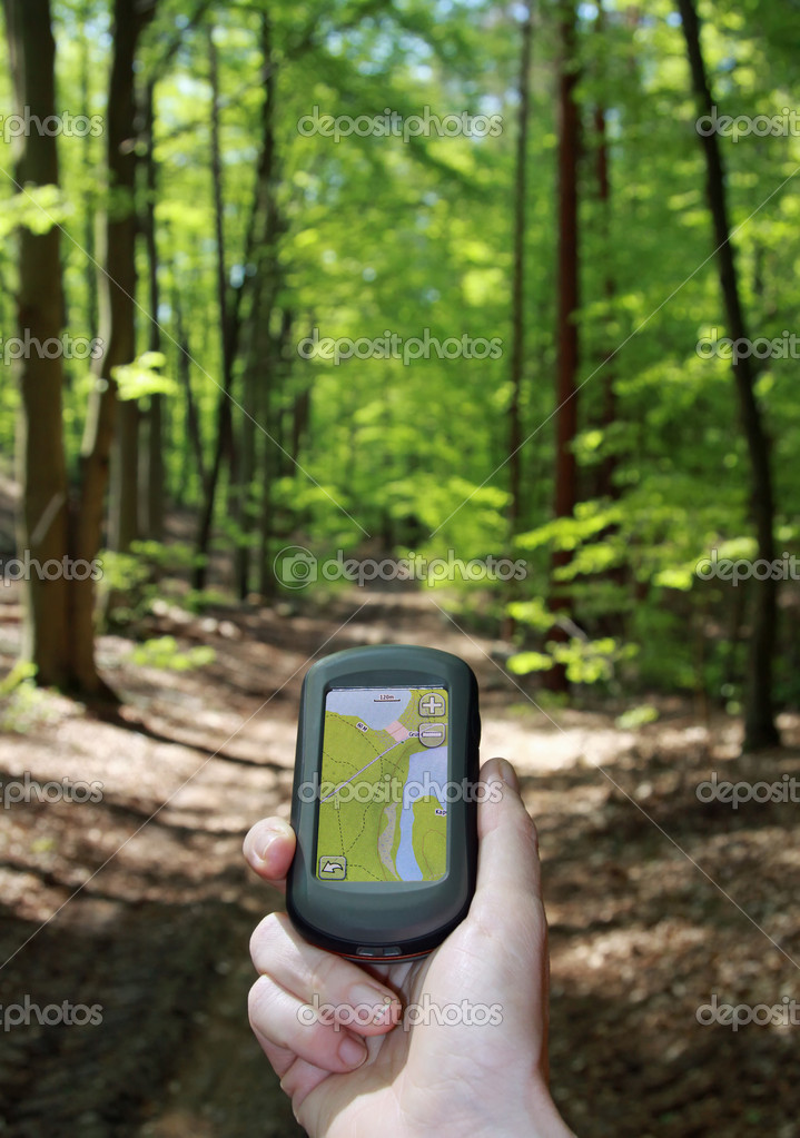Outdoor navigation in the forest
