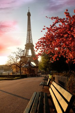 "Картина, постер, плакат, фотообои ""знаменитая эйфелева башня с весенним деревом, париж, франция "", артикул 11156596"