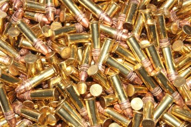 22 Caliber Bullets