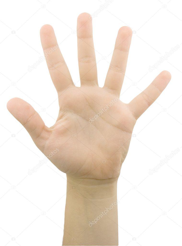 gesto de la mano con 5 dedos — Foto de stock © bodik #11301249