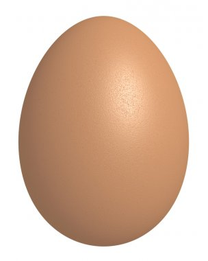 3d rendered highly detailed chicken egg