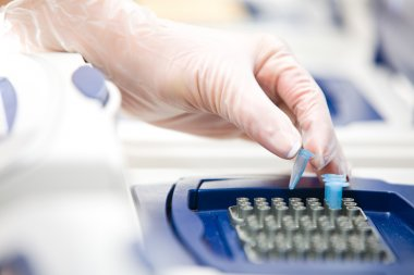 DNA copying, Real-time cycler, white gloves
