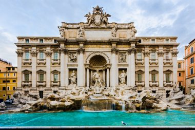 The Trevi Fountain in Rome, Italy with pigeon