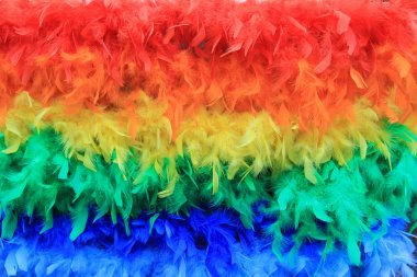 Rainbow feathers background