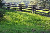 venkovská krajina