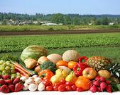Farmers plodin