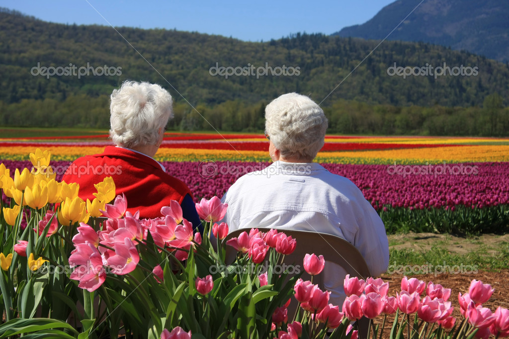 Elderly ladies in the tulips
