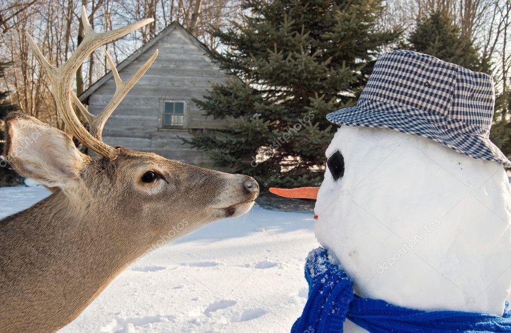 Deer with snowman