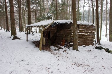 Old Log Cabin in Winter Forest