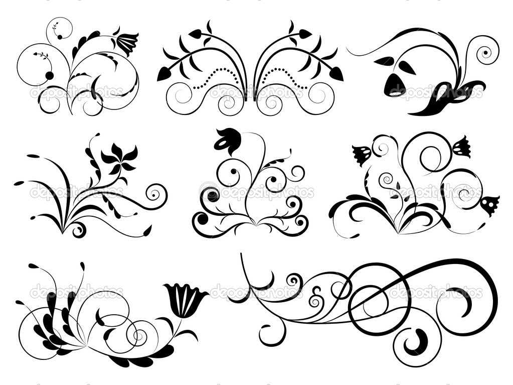 Black And White Floral Design Elements Stock Vector