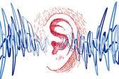 ucho a zvukové vlny
