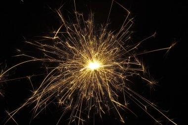 Golden sparklers