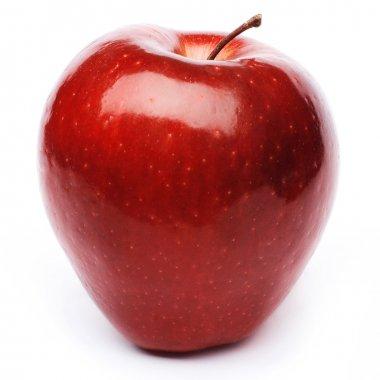 Red apple fruit stock vector