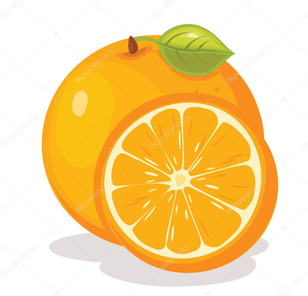 orange vector illustration � stock vector 169 yusufdemirci