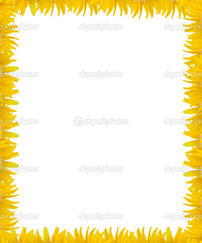 Yellow flower frame with white space background — Stock Photo ...