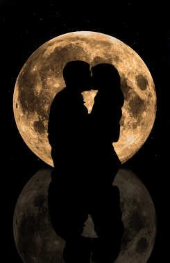 Lovers in the moonlight