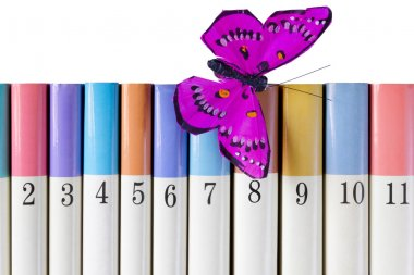 Books with a Silk Butterfly