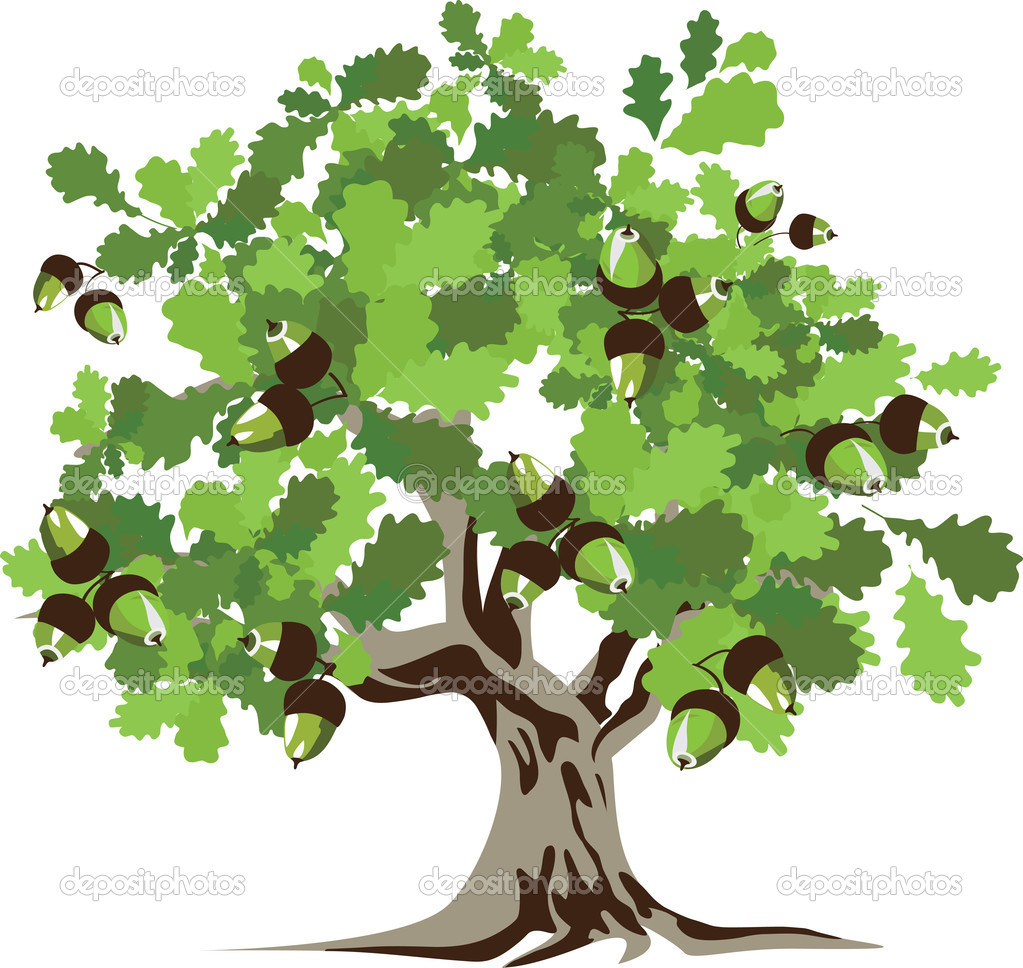 Big green oak tree with acorns, vector illustration