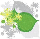 kvetoucí lipovými ratolestmi