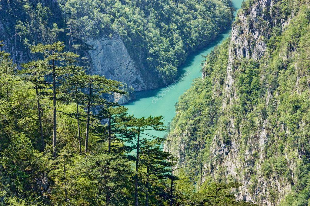 River to mountain