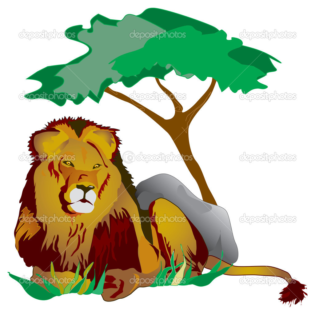 King lion lying under a tree in the grass