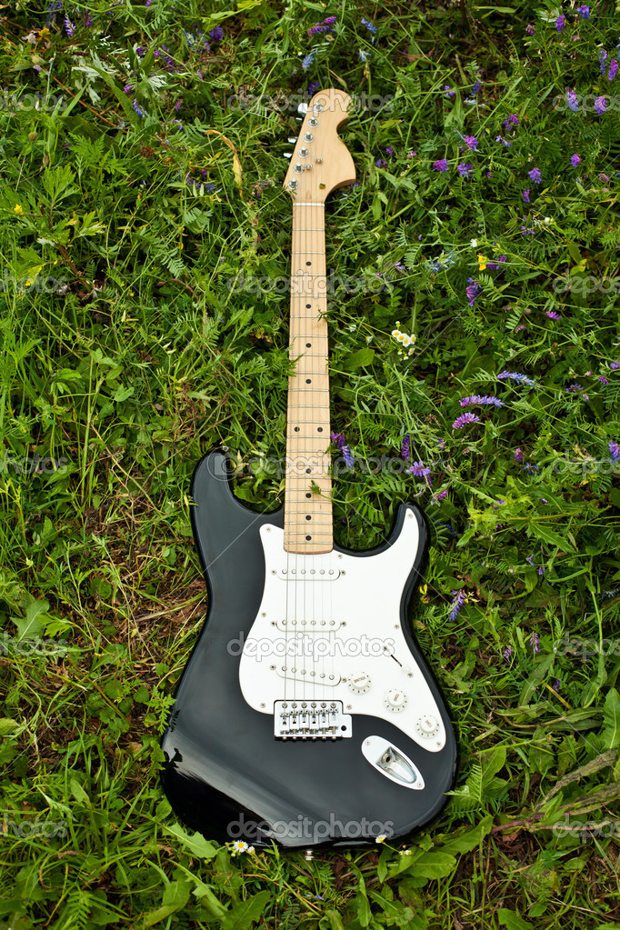 Guitar on green grass yard