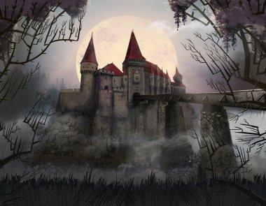 Castle. Thickets. Romania. Horror