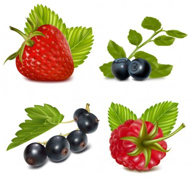 Set of berries with leaves