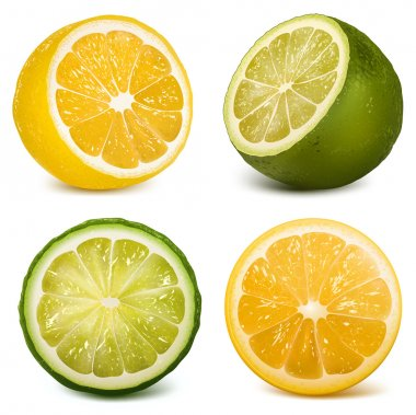 Vector citrus fruits lime and lemon.